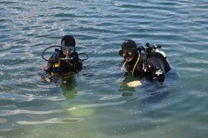 Ausbildung im See